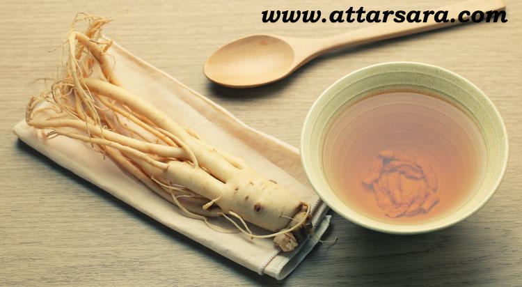 گیاه ریشه جین سینگ